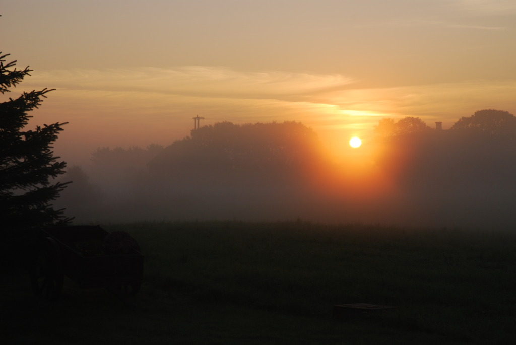 Plankefrue soloppgang