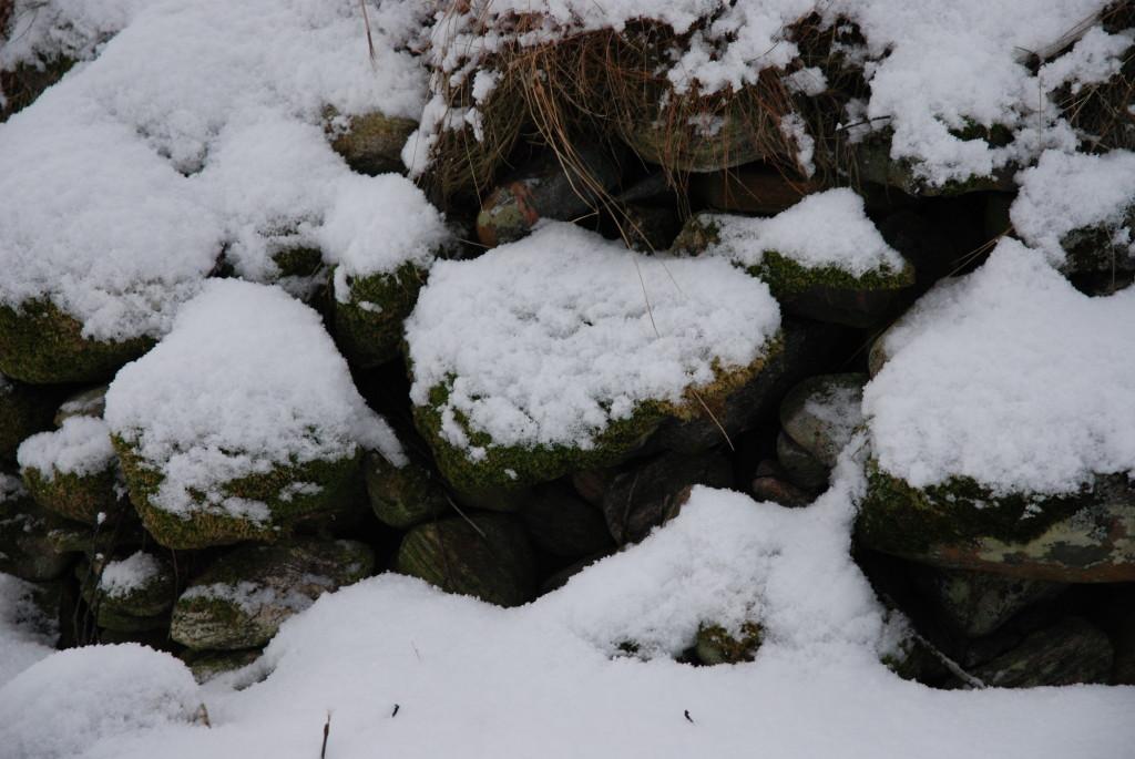 Stein med snø