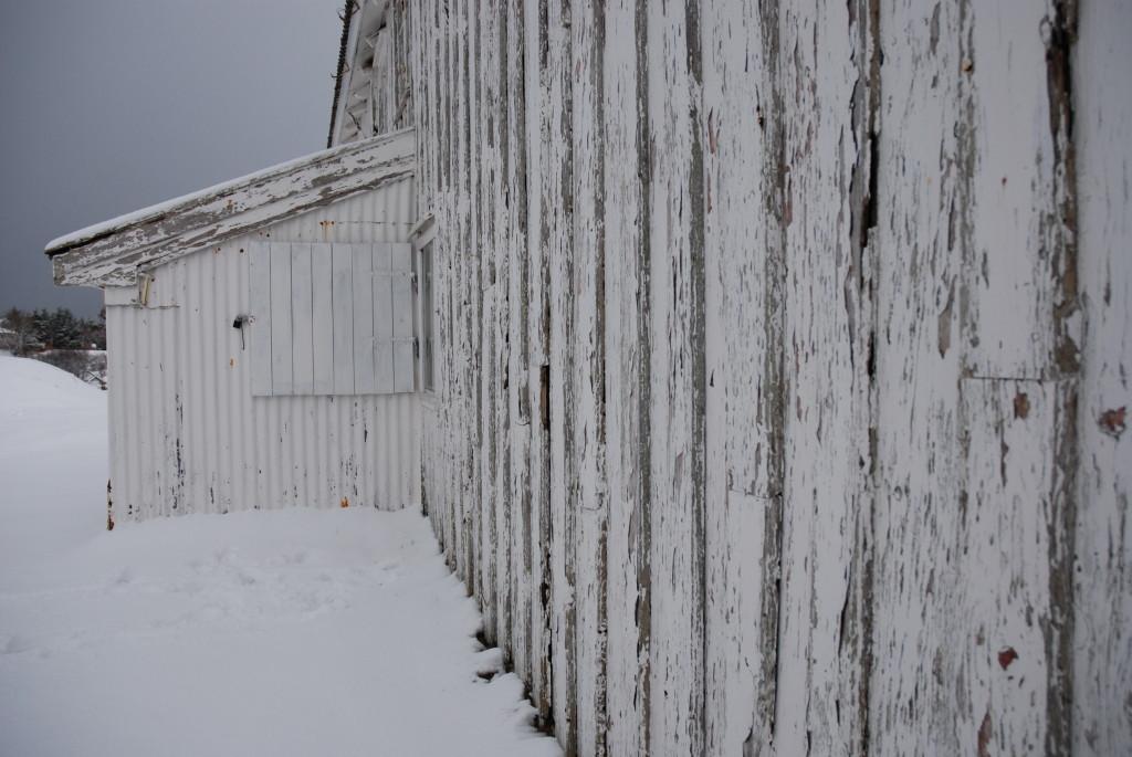 Vinter på Nordmørslånet vårt