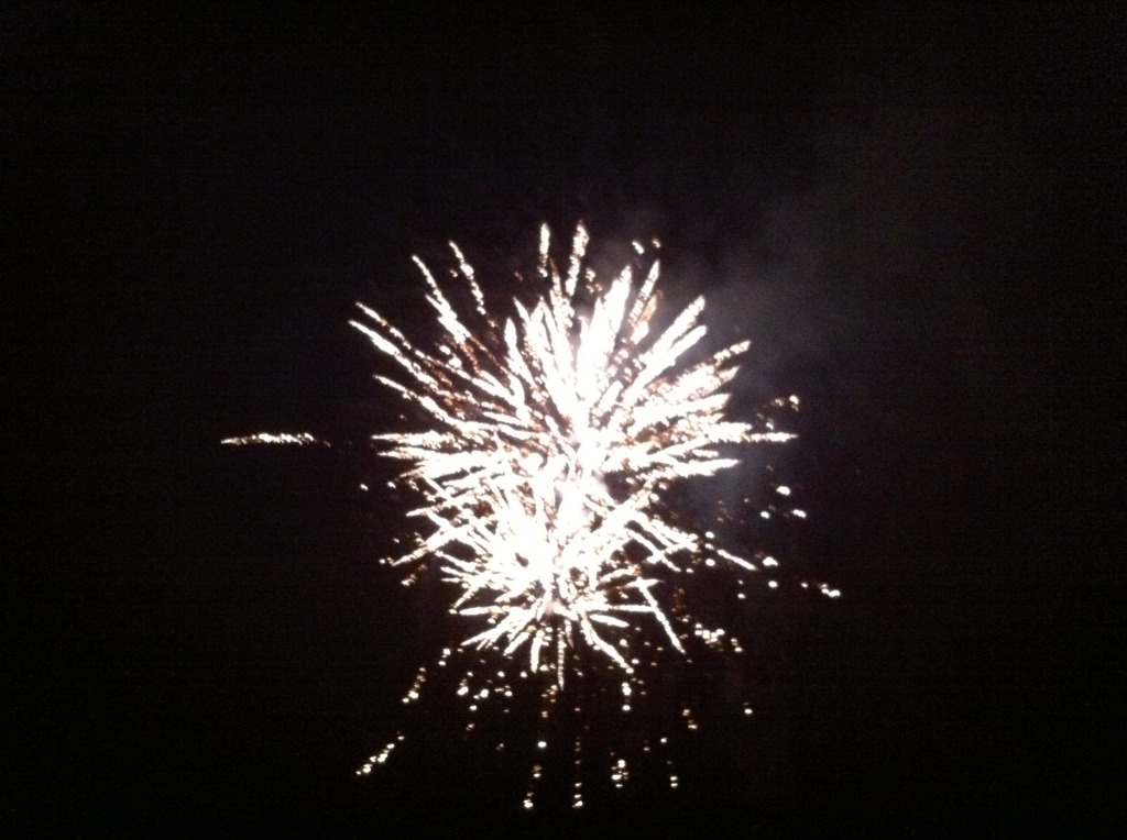 fantastisk nytt år