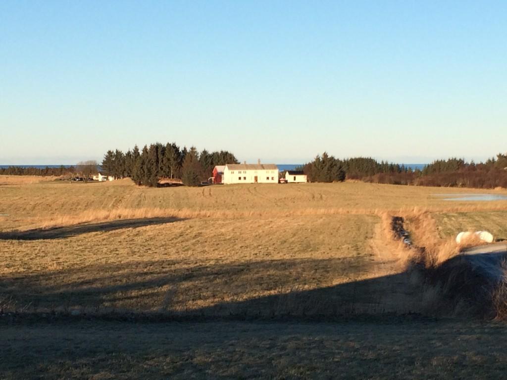 jelå gård
