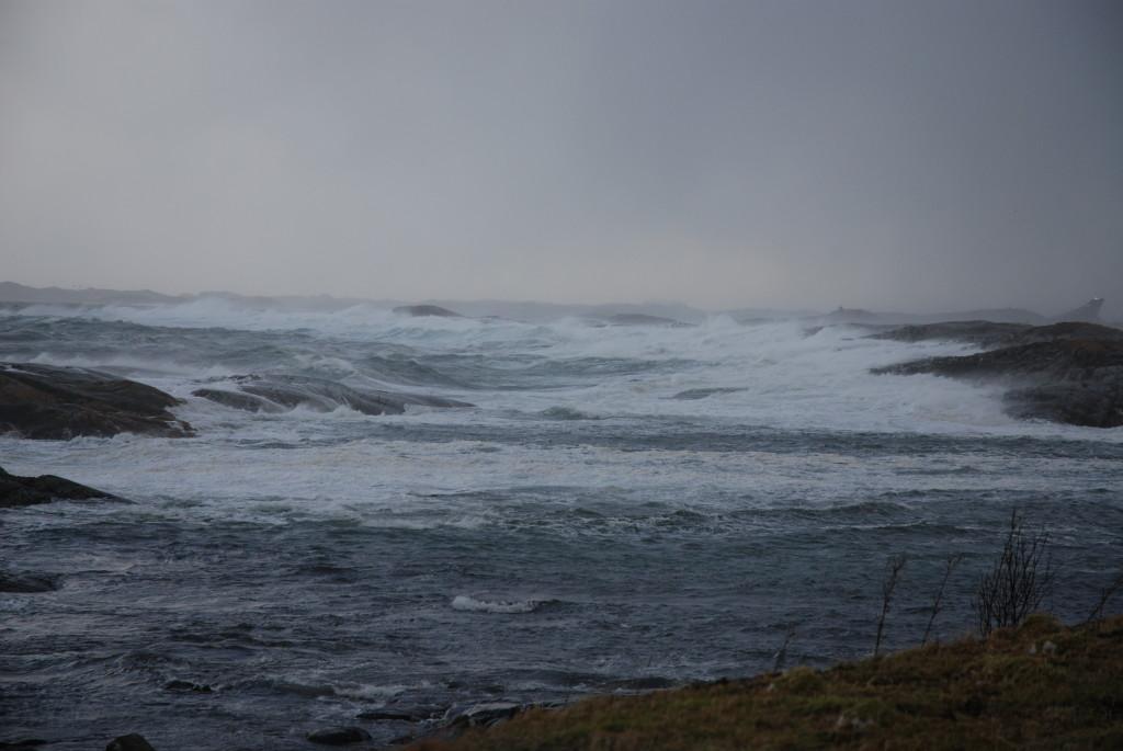 stormen-ole-plankefrue-DSC_0190