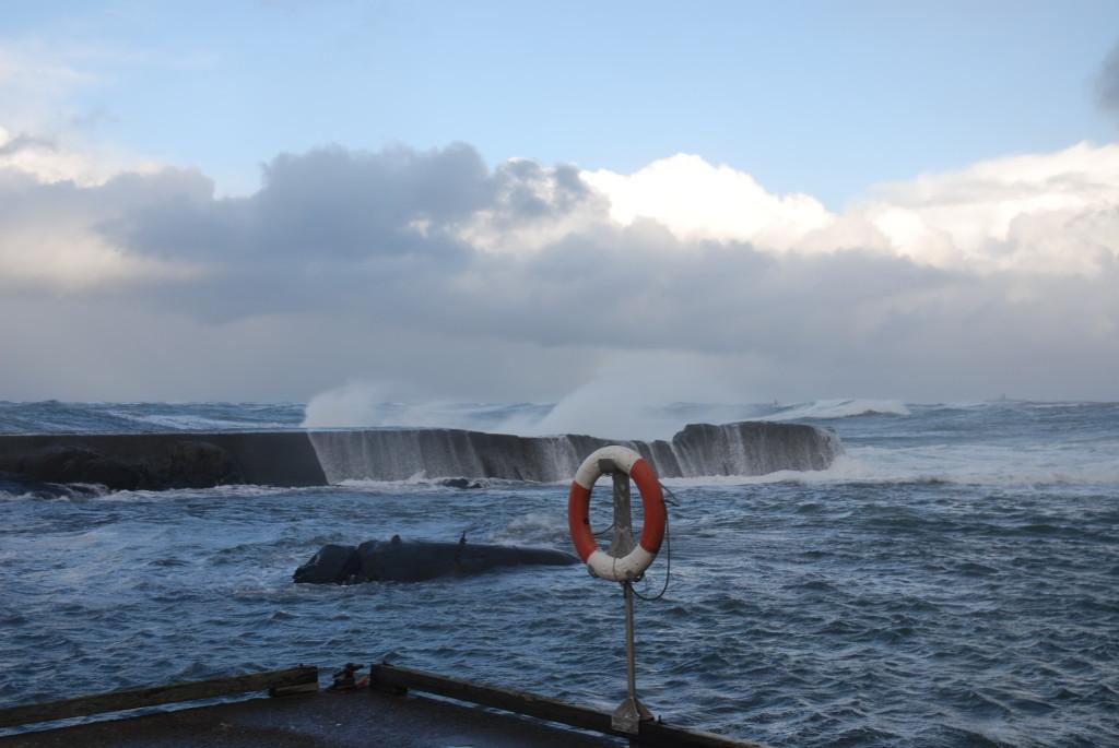 stormen-ole-plankefrue-DSC_0206